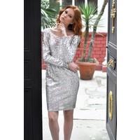 Sofistiqe Gümüş Parlak Elbise