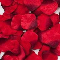 BuldumBuldum Kırmızı Gül Yaprakları