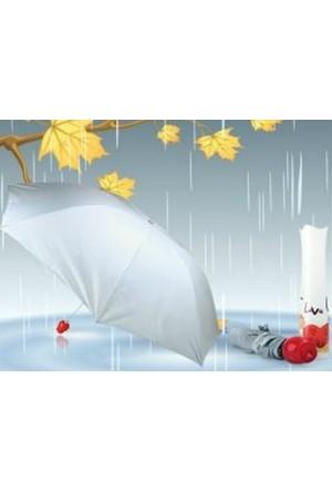 Toptancı Kapında Gül Saplı Love Şemsiye