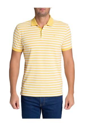 Pierre Cardin Random T-Shirt