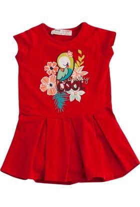 Soobe Pop Girls Kuş Tropikal Kısa Kol Elbise Kırmızı 15 - 18 Ay