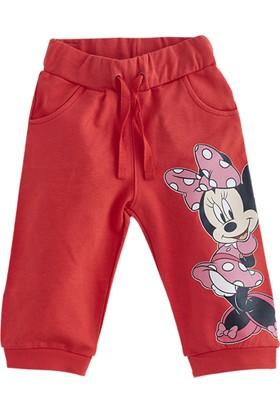 Soobe Lisanslı Disney Minnie Eşofman Altı Kırmızı 15 - 18 Ay