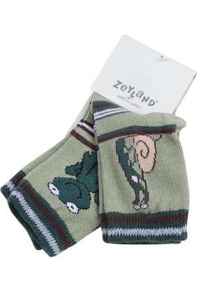 Zeyland Erkek Çocuk 2'li Uzun Konçlu Çorap