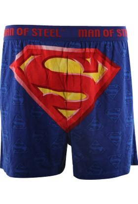 Superman Superman-02 Superman Erkek Boxer