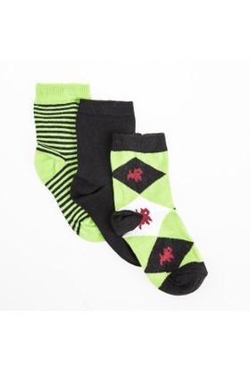 Soobe Erkek Çocuk Çorap 3'lü Yeşil