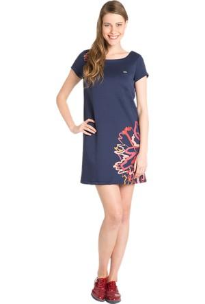 U.S. Polo Assn. Taflan Kadın Örme Elbise