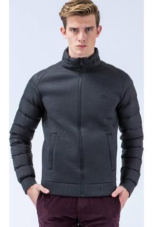Lacoste Sweatshirt Sh1743.43S