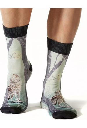 Wigglesteps Wolf Mountaın Erkek Çorap