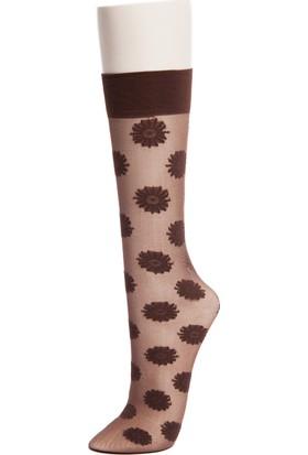 Pierre Cardin Rosalie Kadın Çorap