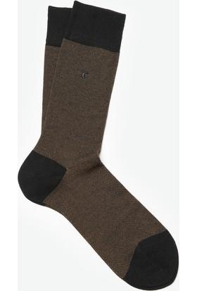 Cacharel Erkek Çorap Sarı
