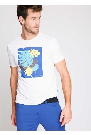 Pierre Cardin Clement Erkek T-Shirt