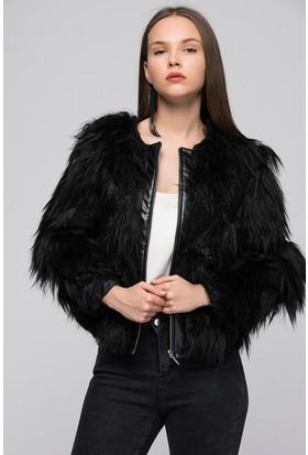 Moda Shop Kadın Siyah Derili Kürk Ceket
