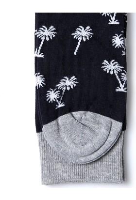 John Frank Erkek Çorap Jflsef0203