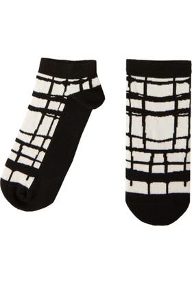Socks ++ Cobweb Kadın Tasarım Desenli Patik Çorap