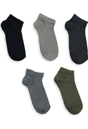LC Waikiki Erkek 5'Li Patik Çorap