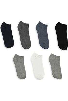 LC Waikiki Erkek 7'Li Patik Çorap