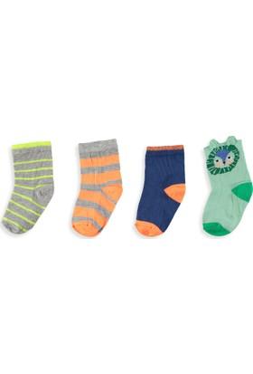 LC Waikiki Erkek Bebek 4'Lü Soket Çorap
