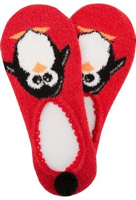 DeFacto Kadın Kısa Çorap Kırmızı