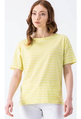 Lacoste Tshirt & Bluz Tf2314.Ft7