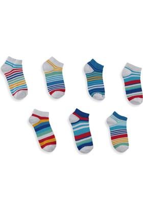 LC Waikiki Erkek Çocuk Çoraplar