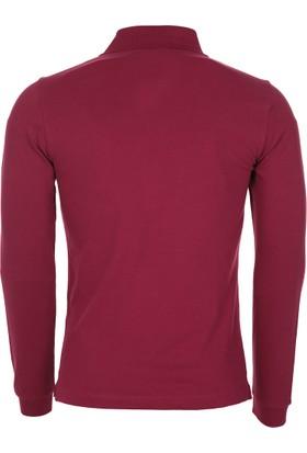 Armani Collezioni Erkek Sweatshirt 6Xcf83Cjdyzc0852