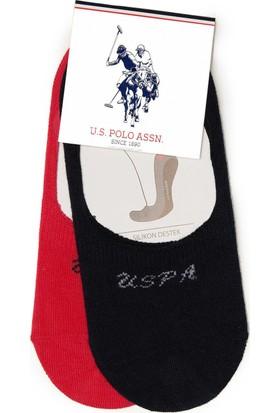 U.S. Polo Assn. Kadın Çorap Kırmızı