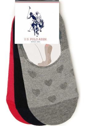 U.S. Polo Assn. Kadın Çorap Gri