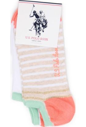 U.S. Polo Assn. Kadın Çorap Pembe