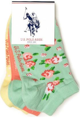 U.S. Polo Assn. Kadın Çorap Yeşil