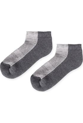 Madame Coco Kadın Patik Çorap - Antrasit