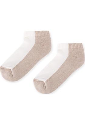 Madame Coco Kadın Patik Çorap - Bej