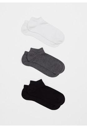 Mavi Üçlü Paket Siyah Çorap