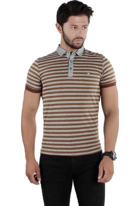 Brango 40147-1 Çizgili Polo Yaka Kahverengi Tshirt