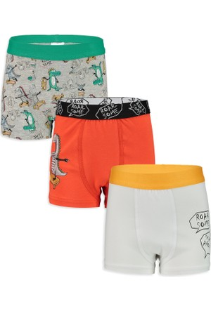 LC Waikiki Erkek Çocuk 3'Lü Boxer