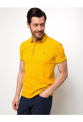 Pierre Cardin Tshirt Basic 50187370
