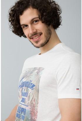 U.S. Polo Assn. T-Shirt 50186249-Vr019