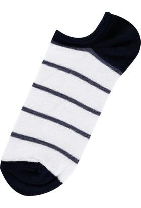 Colin's Beyaz Erkek Çorap