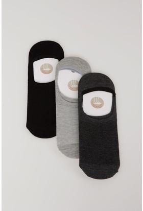 Defacto Erkek Kısa Çorap