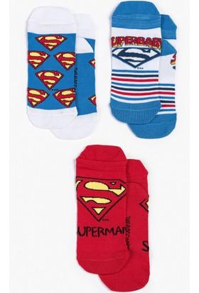 Superman Çocuk 3'Lü Çorap 13017