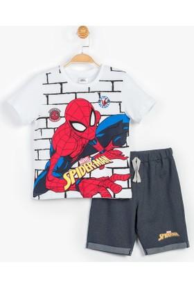 Spiderman Çocuk Şortlu Takımı 12936