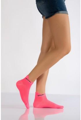 Lateks Kadın Spor Çorabı Üçlü Paket Canlı Renkler
