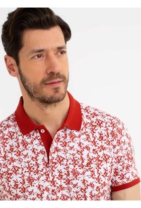 Pierre Cardin T-shirt 50185858-Vr031