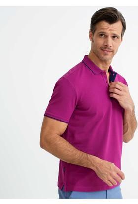 Pierre Cardin T-shirt 50187370-Vr023