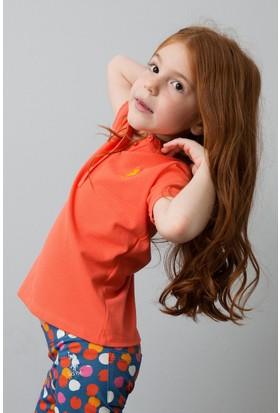 U.S. Polo Assn. T-Shirt 50186888-Vr039