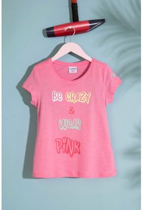 U.S. Polo Assn. T-Shirt 50188428-Vr041