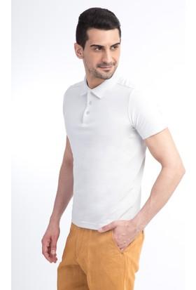 Kiğılı Polo Yaka Düz Slim Fit T-Shirt