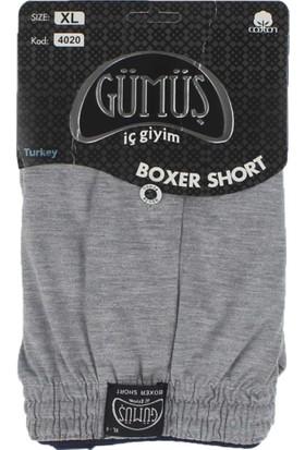 ModaKids Gümüş İç Giyim Erkek Havlu Bel Boxer 040-4020-012