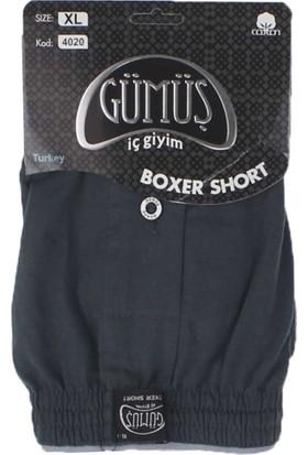 ModaKids Gümüş İç Giyim Erkek Havlu Bel Boxer 040-4020A-011