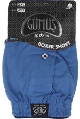 ModaKids Gümüş İç Giyim Erkek Havlu Bel Boxer 040-4020H-012