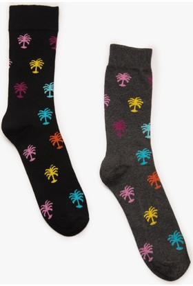 Koton Erkek 2'Li Erkek Çorap